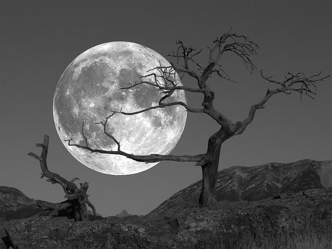Лунный календарь, астрология джйотиш