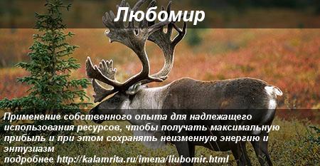 совместимость имени Любомир с другими именами